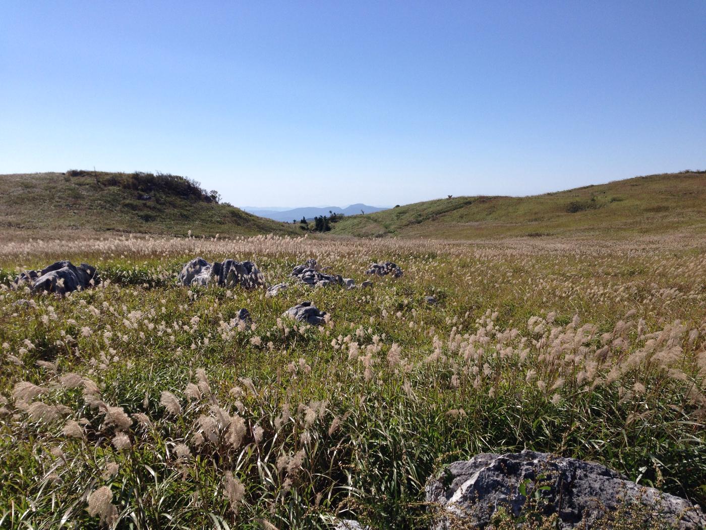 四国カルストの草原の写真