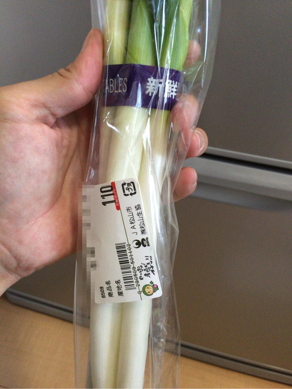ネギ110円