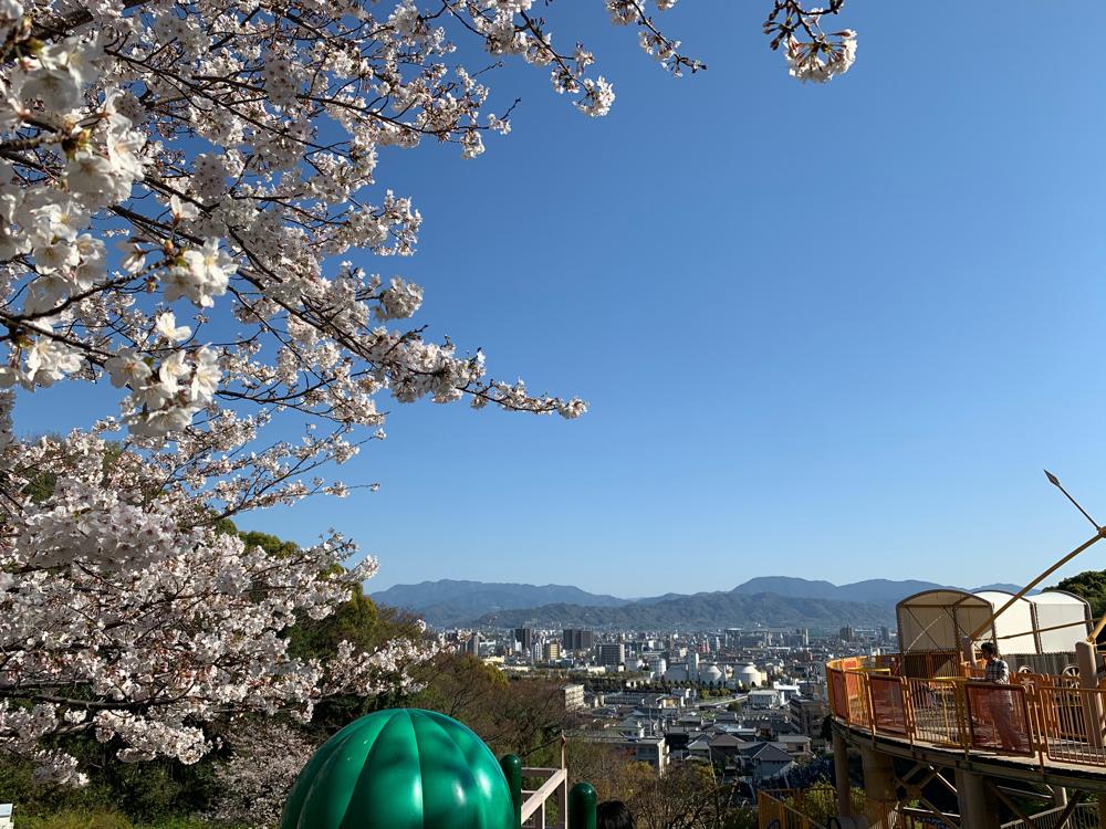 坊ちゃん夢ランドからの松山市の眺め