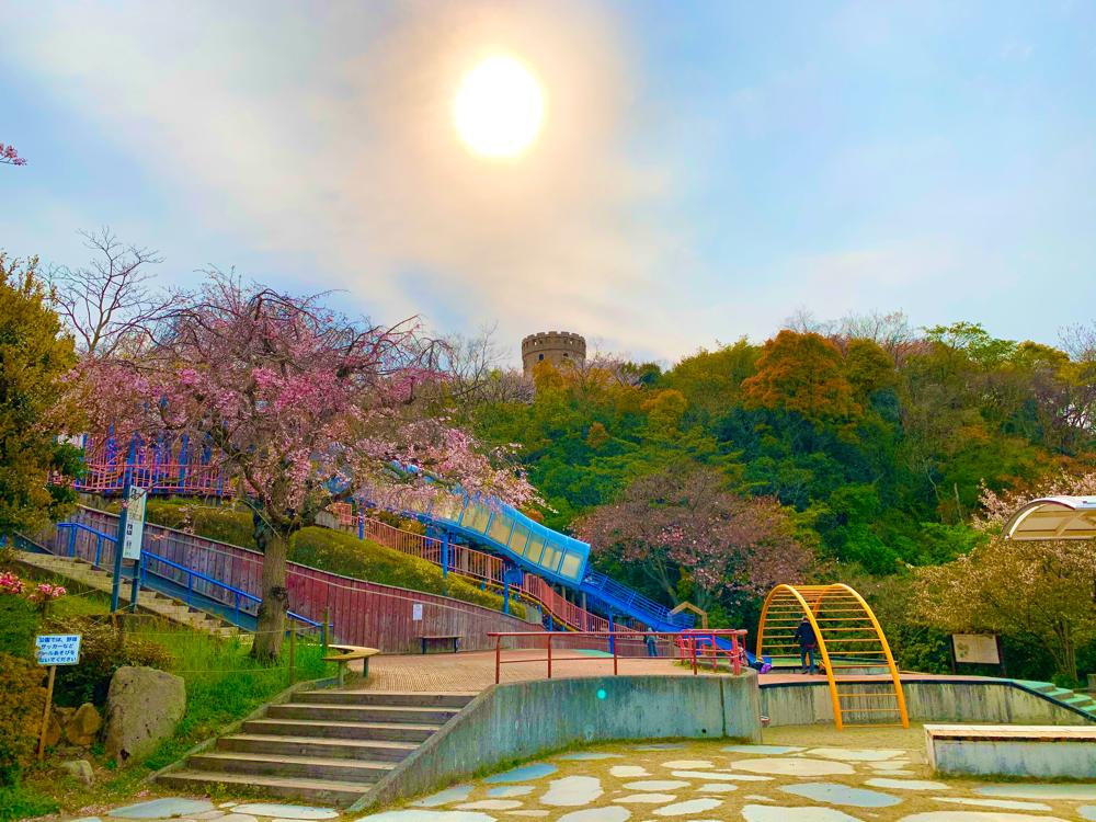 松山総合公園のちびっこ広場の全景