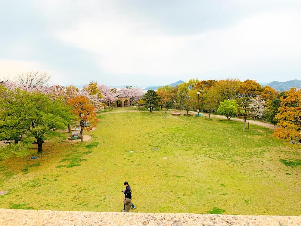 松山総合公園の展望広場