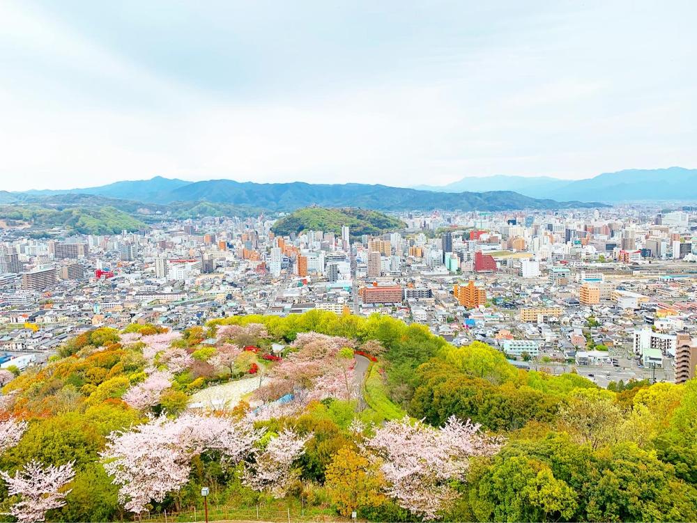 松山総合公園の展望広場からの眺め