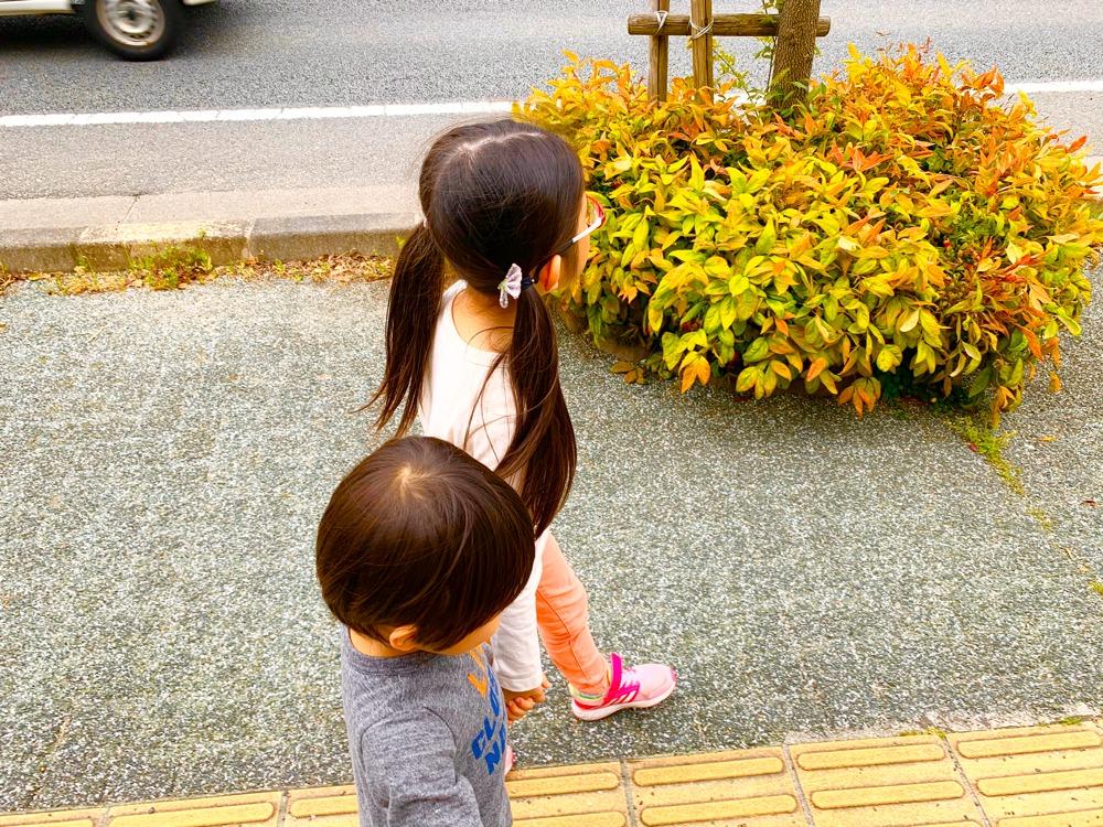姉弟で散歩